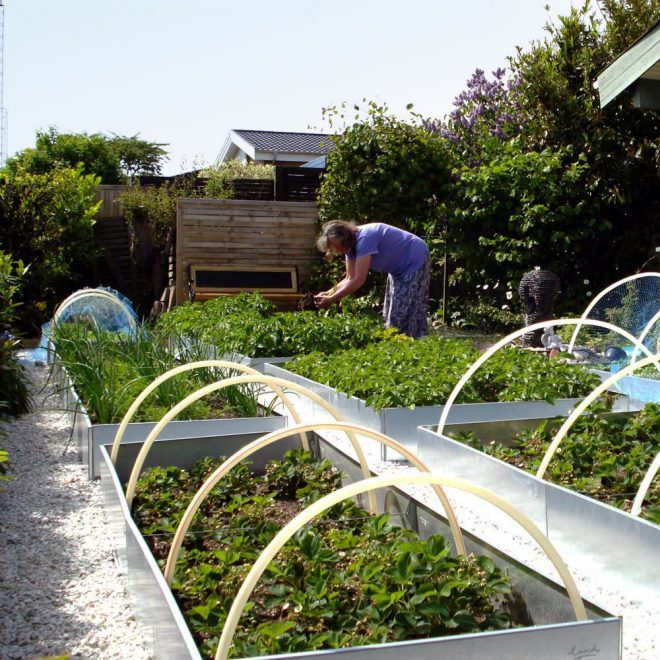 Land Classic avlånga odlingslådor galvaniserad med hemlagad växthus
