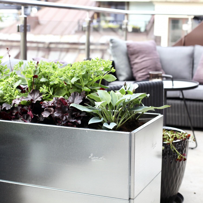 Långsträckta blomlådor från land odlingslådor i utformningen av Chrispdesign Stockholm