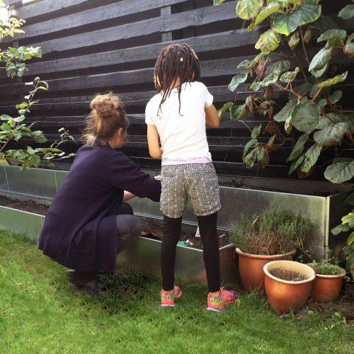 Extra lång odlingslåda i galvaniserad järn från land Garden som köksträdgård