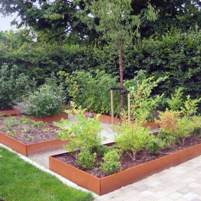 Stora avlånga odlingslådor i obehandlad plåt i köksträdgården