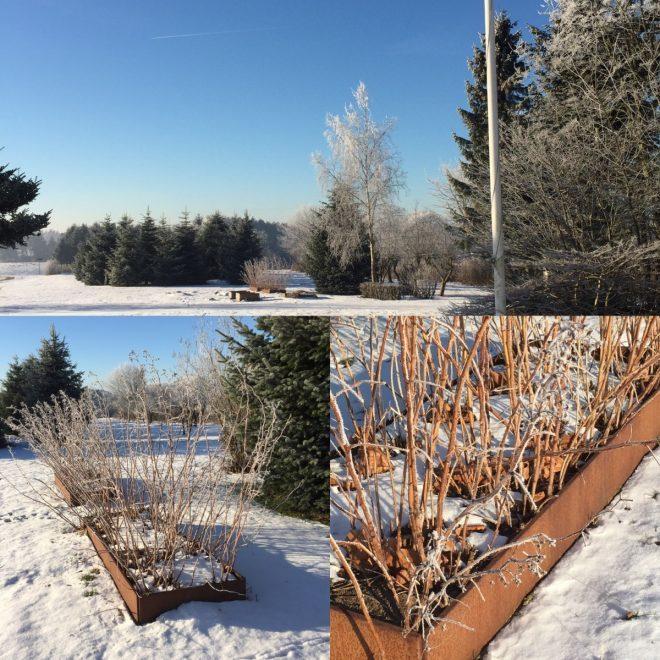 Stora avlånga odlingslådor i snön