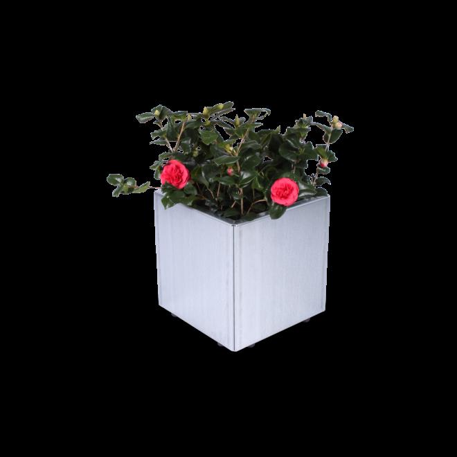 kvadratisk blomlåda i höggalvaniserad Magnelis stål