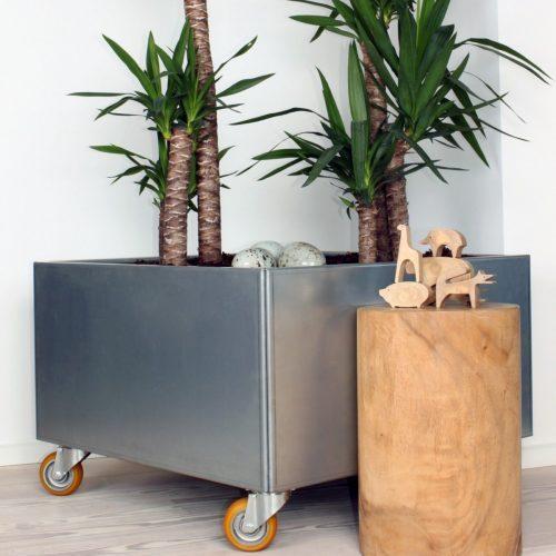 Planteringskärl mobil 80x80cm med yuccapalmer