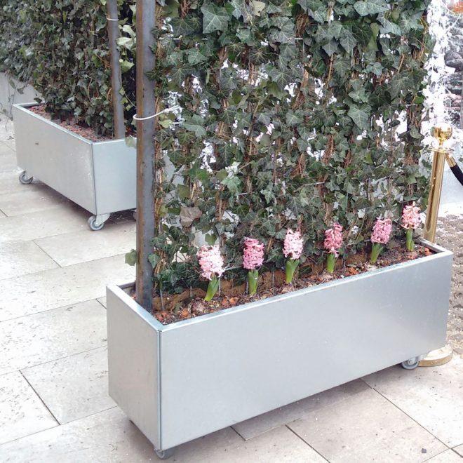 Planteringskärl med hjul används som mobil avskärmning