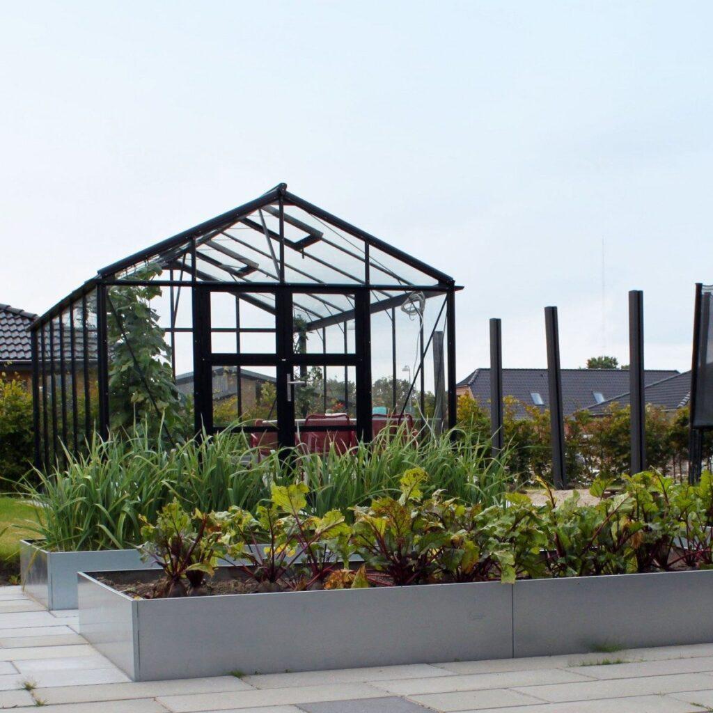 Land Classic stora avlånga odlingslådor i galvanioserad järn i köksträdgården