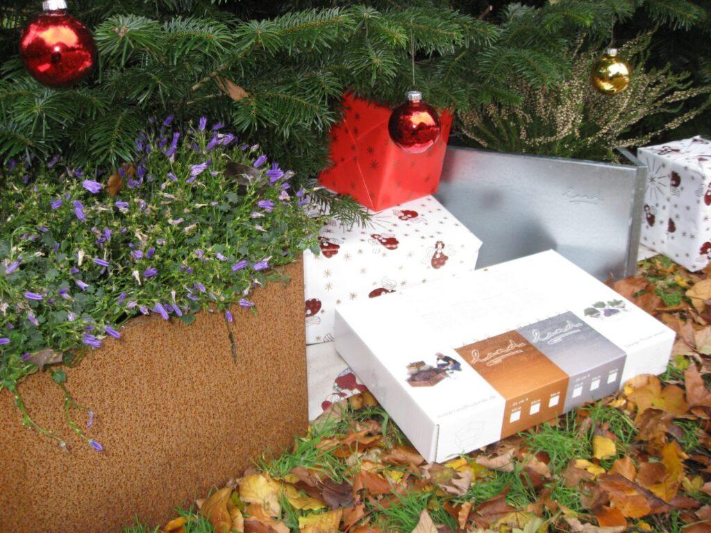 odlingslådor under julgranen